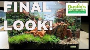 Aquascape Nj Aquascaping Contest Reef A Palooza Final Look At Aquascapes Youtube