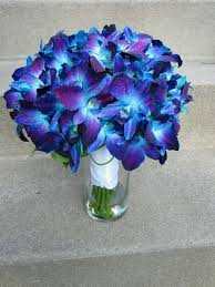 blue and purple flowers my wedding flower blue orchids thinking about doing white