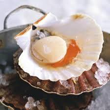 cuisiner corail jacques noix de jacques cuites en coquilles émulsion de barbes et
