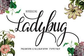 ladybug script fonts creative market