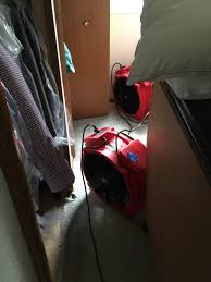 Chicago Bed Bug Experts Patented Heat Treatment Chicago Bed Bug Docs Bed Bug Docs