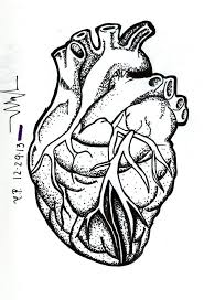 33 best actual heart outline tattoo design images on pinterest