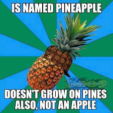 Ananas Pineapple Meme - the best ananas memes memedroid