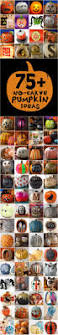 336 best pumpkin carving u0026 pumpkin decorating ideas images on