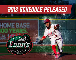 the official site of the great lakes loons loons com homepage