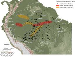 native plants in the amazon rainforest domesticated amazonia proceedings of the royal society of london
