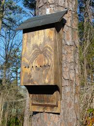 hous com plywood bat houses