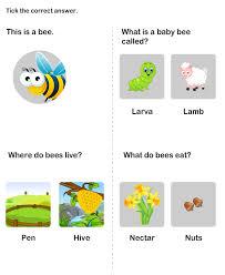 farm animal worksheet 8 science worksheets kindergarten