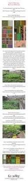 Best Vegetable Garden Layout by Best 25 Crop Rotation Ideas On Pinterest Companion Planting