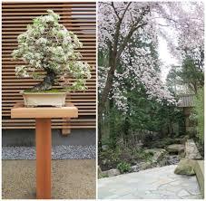 colorado u s japanese gardens portland japanese garden u0027s cultural connections by ethne clarke