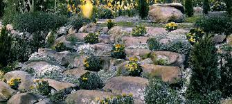 Diy Japanese Rock Garden Rock Garden Plans Rock Garden Ideas Japanese Rock Garden Design