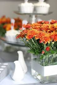 639 best southern garden images on pinterest gardens flowers