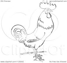 cartoon clipart of an outlined rooster on grass black and white