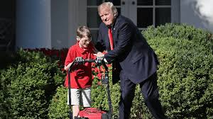Frank Meme - trump watching 11 year old frank mow the white house lawn is the