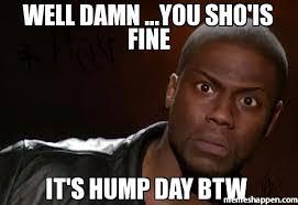 Hump Day Meme - well damn you sho is fine it s hump day btw meme