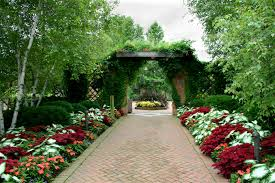 cliserpudo beautiful flower garden path images