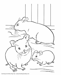 pets coloring page pets coloring pages free printable hamster coloring pages and