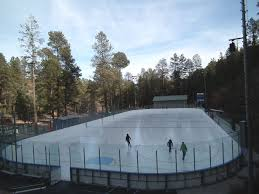 Backyard Ice Skating Rink Triyae Com U003d Backyard Ice Rink Size Various Design Inspiration