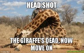 Meme Giraffe - head shot the giraffe s dead now move on make a meme