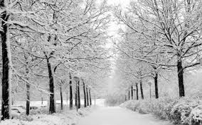 67 snow backgrounds download free awesome high resolution