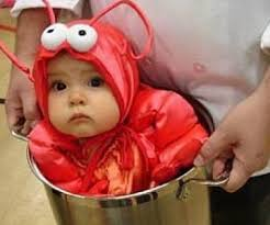 Halloween Costumes Babys 20 Baby Lobster Costume Ideas Funny Baby