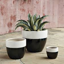 Plants And Planters by Claude Planters West Elm