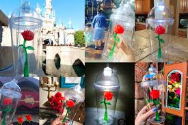 Enchanted Rose That Lasts A Year Why This Red Rose Cup At Disneyland Went Viral