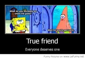 True Friend Meme - everyone deserves a true friend