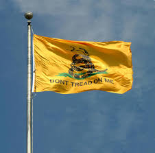 Don T Tread On Me Flag Origin Ny Vets Ordered To Remove