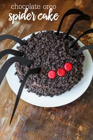 with chocolate spiders