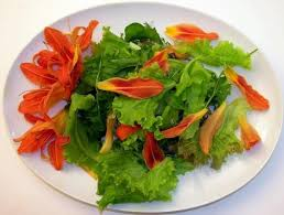 Salad With Edible Flowers - edible flower cuisine and gorgeous food presentation