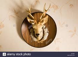 Fake Deer Head Wall Mount Plastic Deer Head Mounted On Wall Stock Photo Royalty Free Image
