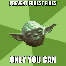 Only You Can Prevent Forest Fires Meme - prevent forest fires only you can create meme