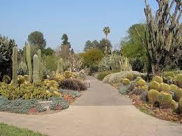 Huntington Botanical Gardens Pasadena by 25 Best Huntington Library Images On Pinterest Botanical Gardens