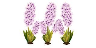 tutorial vector c illustrator tutorial vector flower plant illustrator tutorials