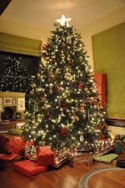 stunning fraser fir artificial christmas trees with easy plug