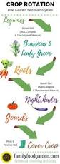 the 25 best crop rotation ideas on pinterest companion planting
