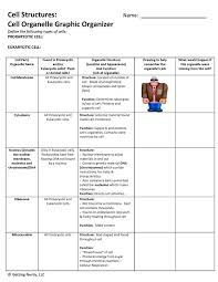 cell organelle graphic organizer differentiated for various