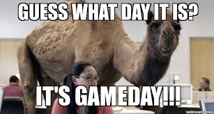 Game Day Meme - gameday guess what day it is it s gameday weknowmemes