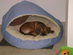 Dog Bed With Canopy Exterior Exciting Round Beige Coolaroo Dog Bed With Canopy