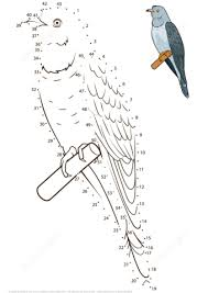 cuckoo bird dot to dot free printable coloring pages