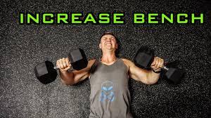Top Bench Press Top 5 Exercises To Increase Your Bench Press Break Through