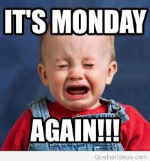 I Hate Mondays Meme - 27 best i hate monday images