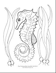 articles seahorse mandala coloring pages tag seahorse
