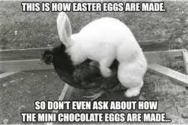how easter eggs are made funny meme desktop backgrounds easter