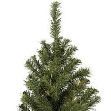 how many feet of christmas lights for 7 foot tree nearly natural 5378 7 5 feet cashmere slim christmas tree with clear