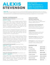ba resume format creative business resumes free creative business resume template