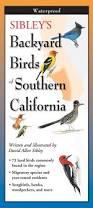 California Backyard Birds by Sibley U0027s Backyard Birds Of Southern California By Written