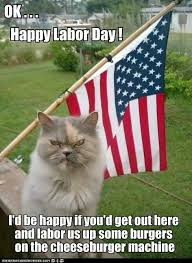 Labor Day Meme - 8 best labor day cats images on pinterest cats kittens and baby