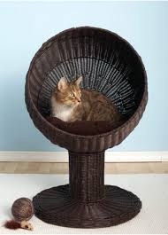 wicker cat beds for a cool nights sleep